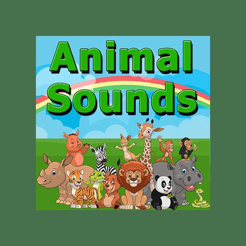 animal sounds epic stock media