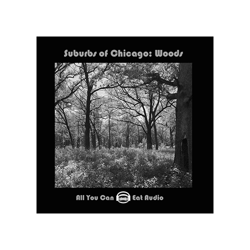 Suburbs of Chicago Woods sound effects ambiences