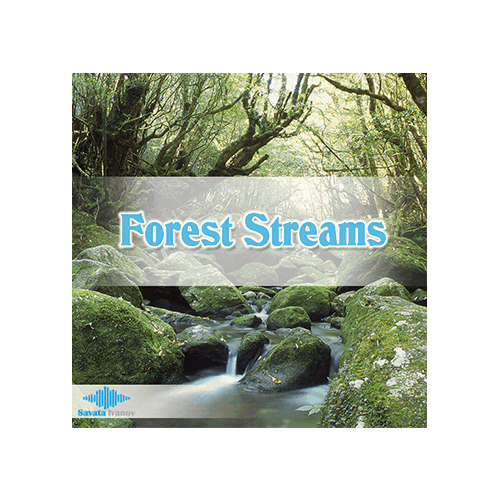 Forest Streams Ambience Sound Effects