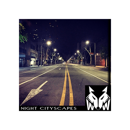 Night Cityscapes ambience sound effects library